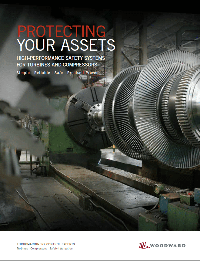 Protecting Your Assets Brochure